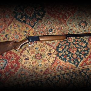 Marlin 22 Caliber Rifle