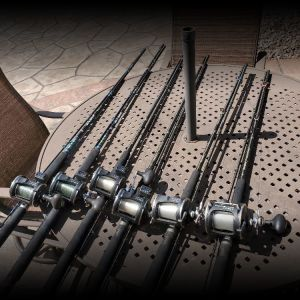 Lake Michigan Rods and Reels