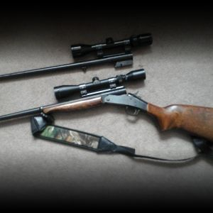 Harrison and Richardson  handi rifles