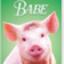 baebb_code