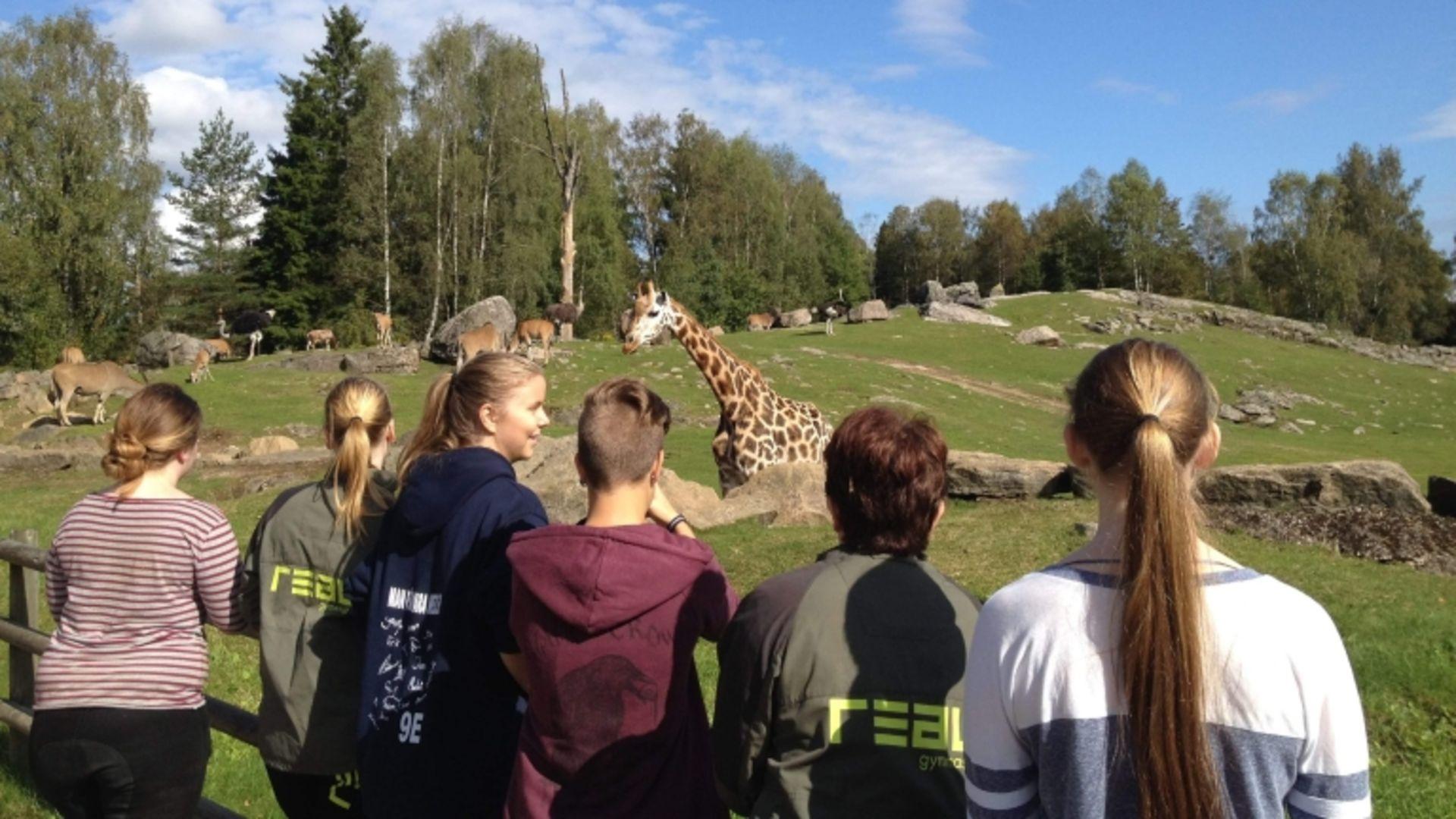 Realgymnasiet startar djurparksutbildning i framkant