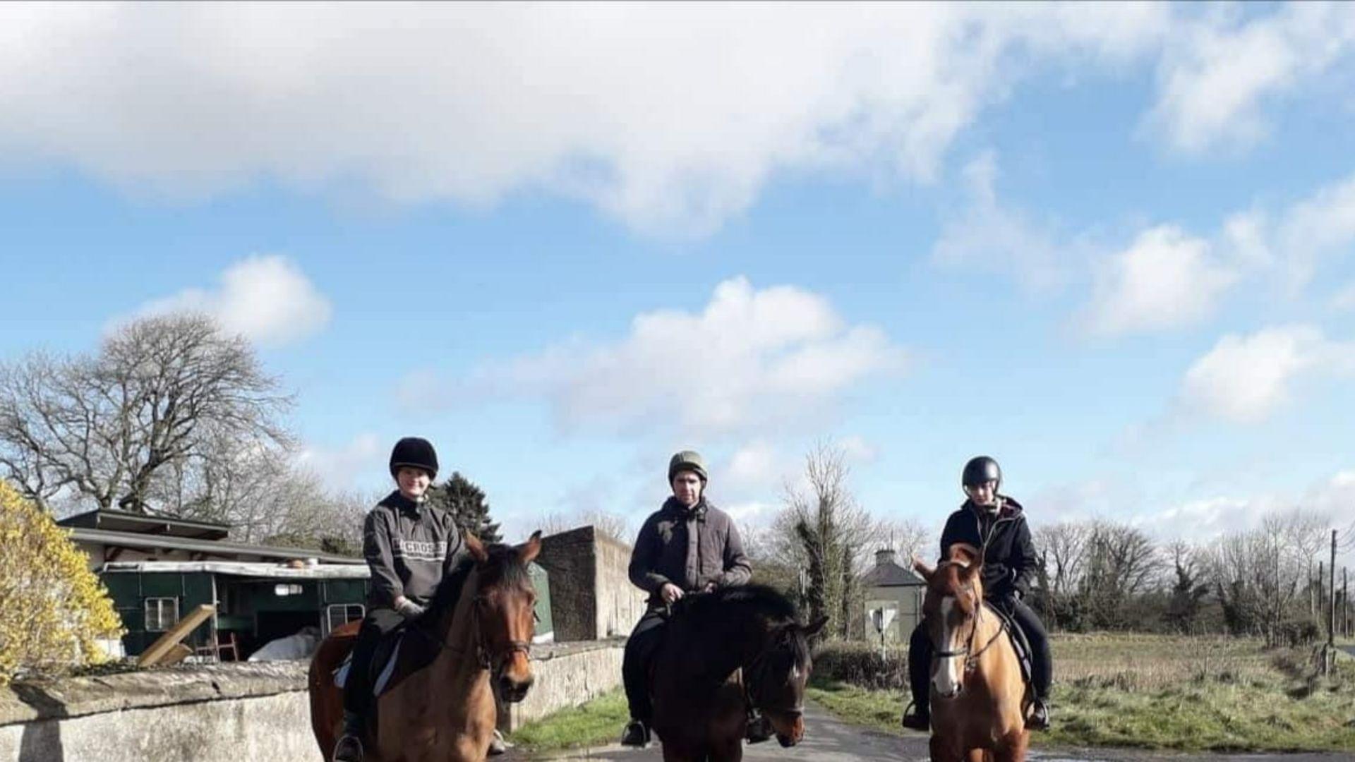 Utlandspraktiken på Irland gav Josefin nya erfarenheter kring hästhållning