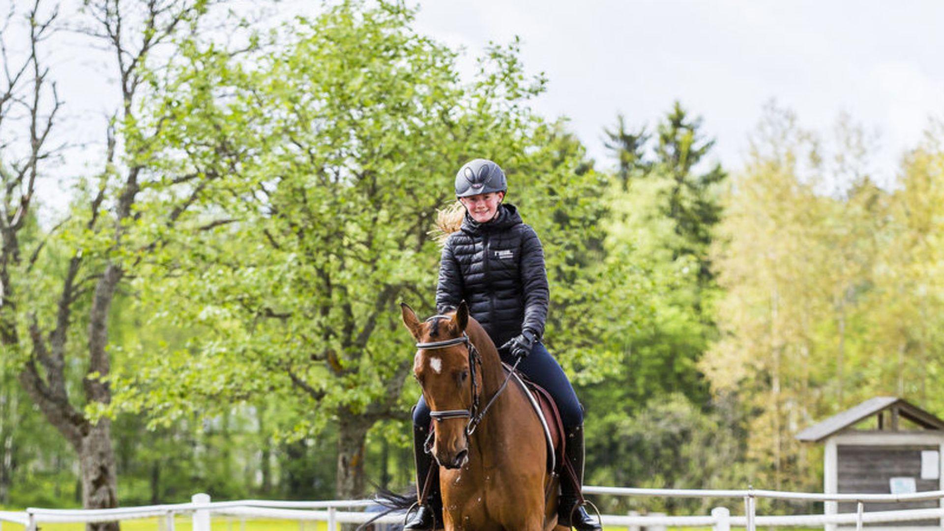 Ökat intresse för Realgymnasiets hästutbildningar i Skåne