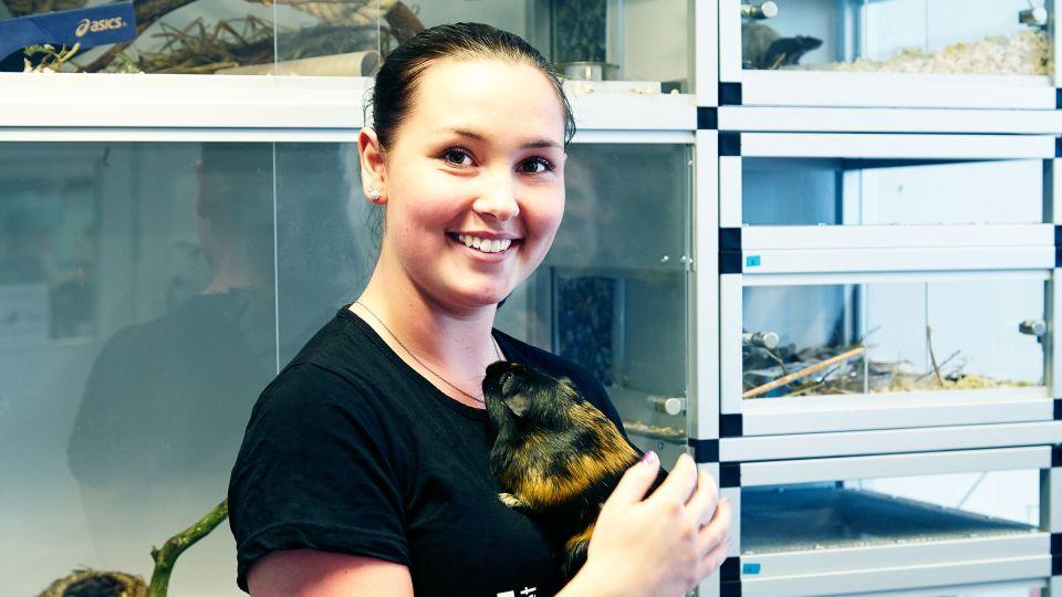 Skillnaderna mellan Hund- & Djurvårdsutbildningen