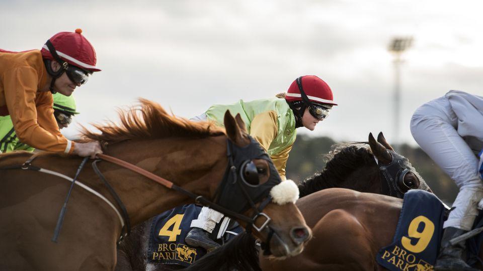 Nya inriktningar inom häst tillsammans med Jägersro Trav och Svensk Galopp