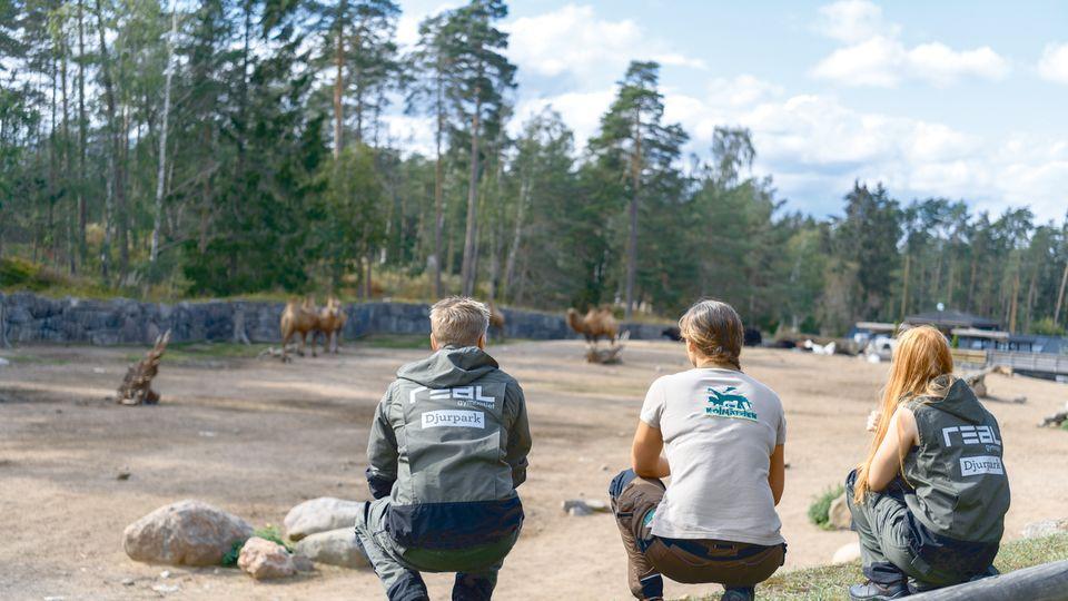 Nytt livsviktigt utbildningsprojekt tillsammans med Kolmårdens Djurpark