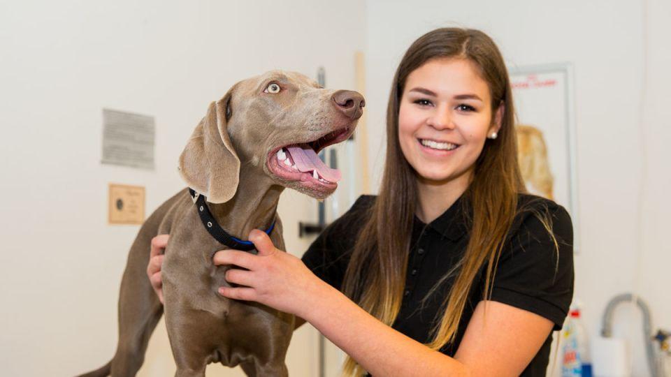 Lärare på Realgymnasiet tränar hundar att spåra Covid-19