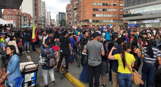 Gatubild Colombia