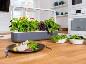 holiday gift guide click and grow smart garden