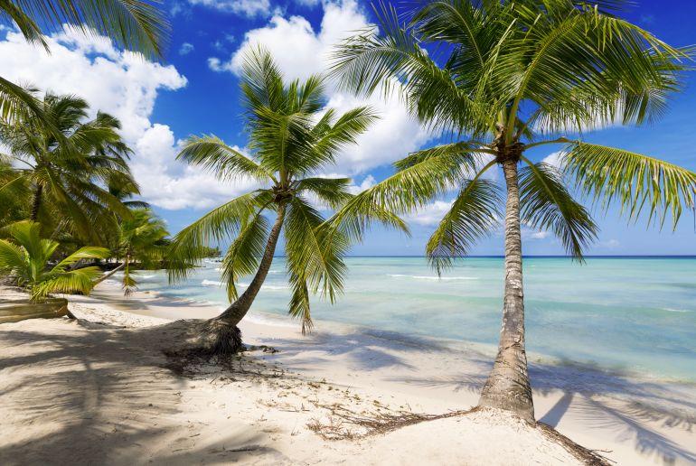 strand jamika