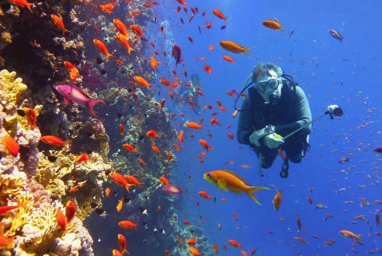 Unterwasser Taucher