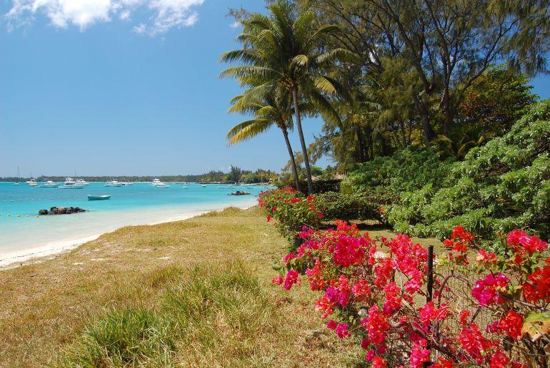 Strand Trou aux biches auf Mauritius