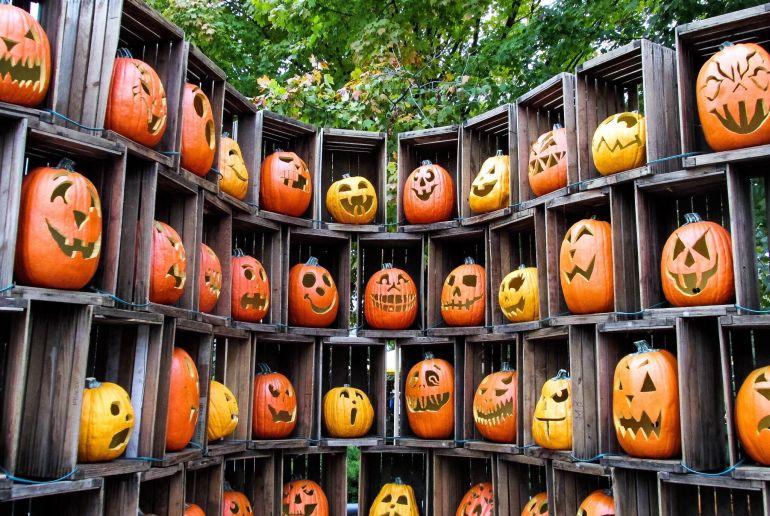 Halloween Kürbise