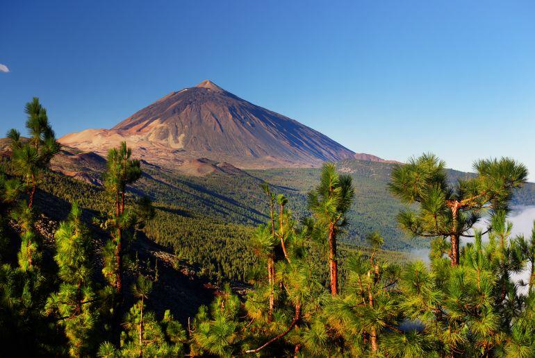 Berg und Planzen in Spanien