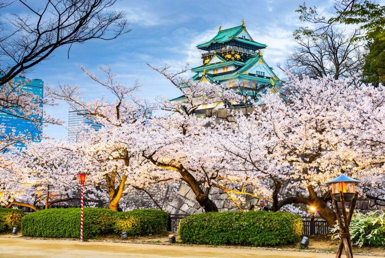 Blüende Bäume in Japan