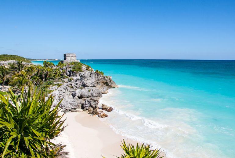 Strand mit Pflanzen in Mexiko