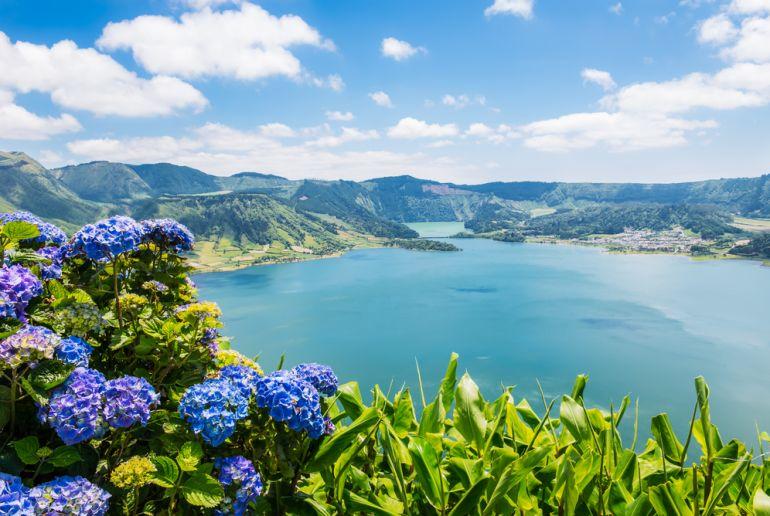 Blumen und Küste auf den Azoren