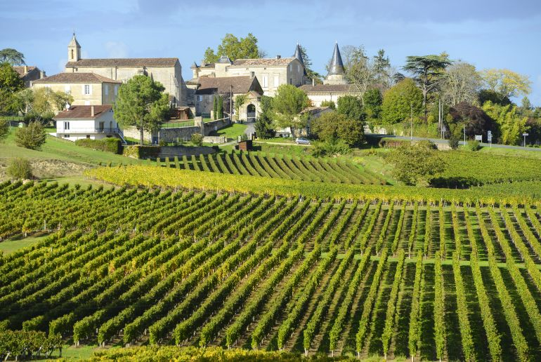 Weinlandschaft Bordeaux