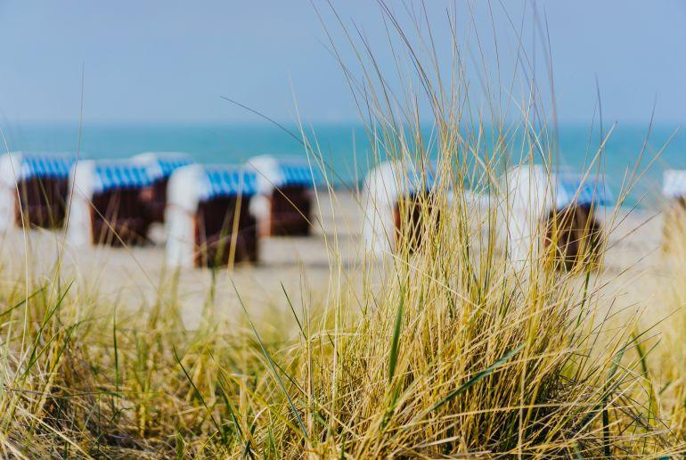 Grashalme und Strandkörbe am Strand von Travemuende, Luebeck