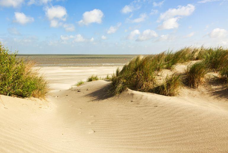 Dünen am Knokke-Heist Strand im Belgien