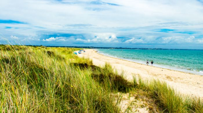 Weston-super-Mare, England. Explore Weston Woods in the day but reach the beach by dusk