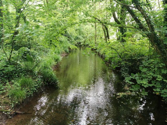 Cork, Ireland. Explore the beautiful countryside on the way to Kinsale