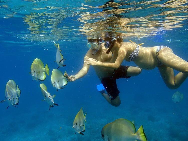 Schwangerne Frau beim Tauchen im Meer
