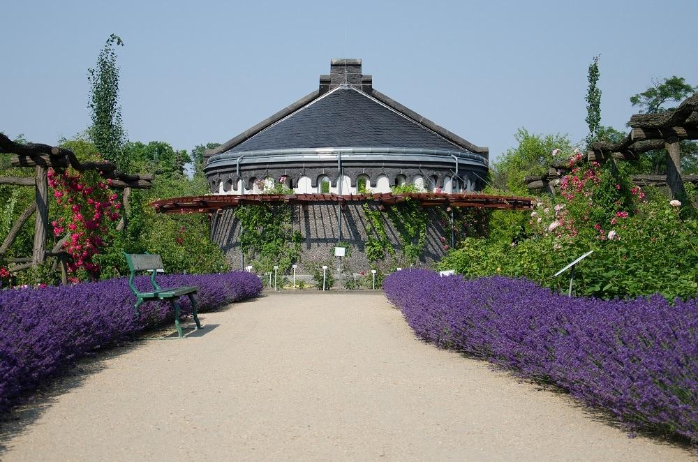 Berlino - Botanischer Garten