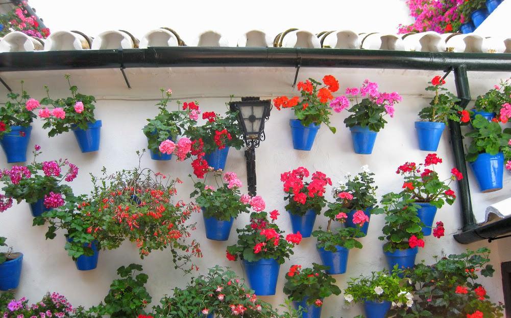 patios de cordoba en calle tinte 9