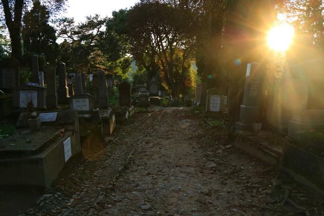 romania-cimitero-sighisoara