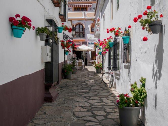 Estepona: Calles de Estepona
