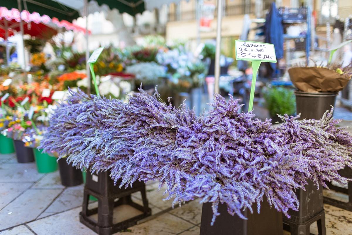 Il mercato dei fiori ad Aix-en-Provence