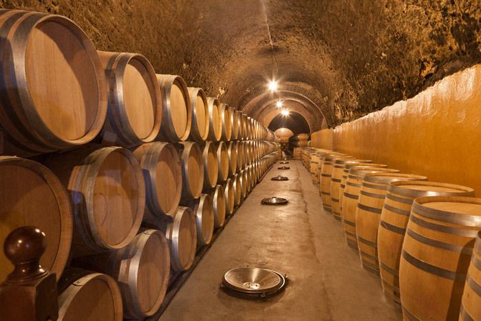 Bodegad de vino en valladolid