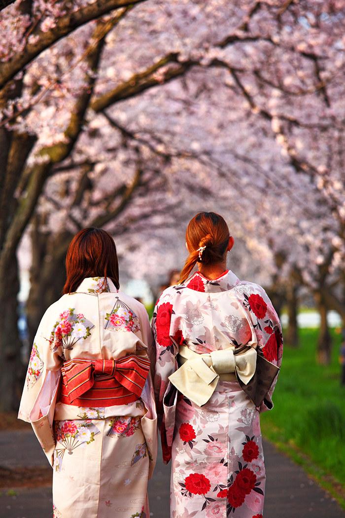 Qué ver en Tokio: almendros en flor