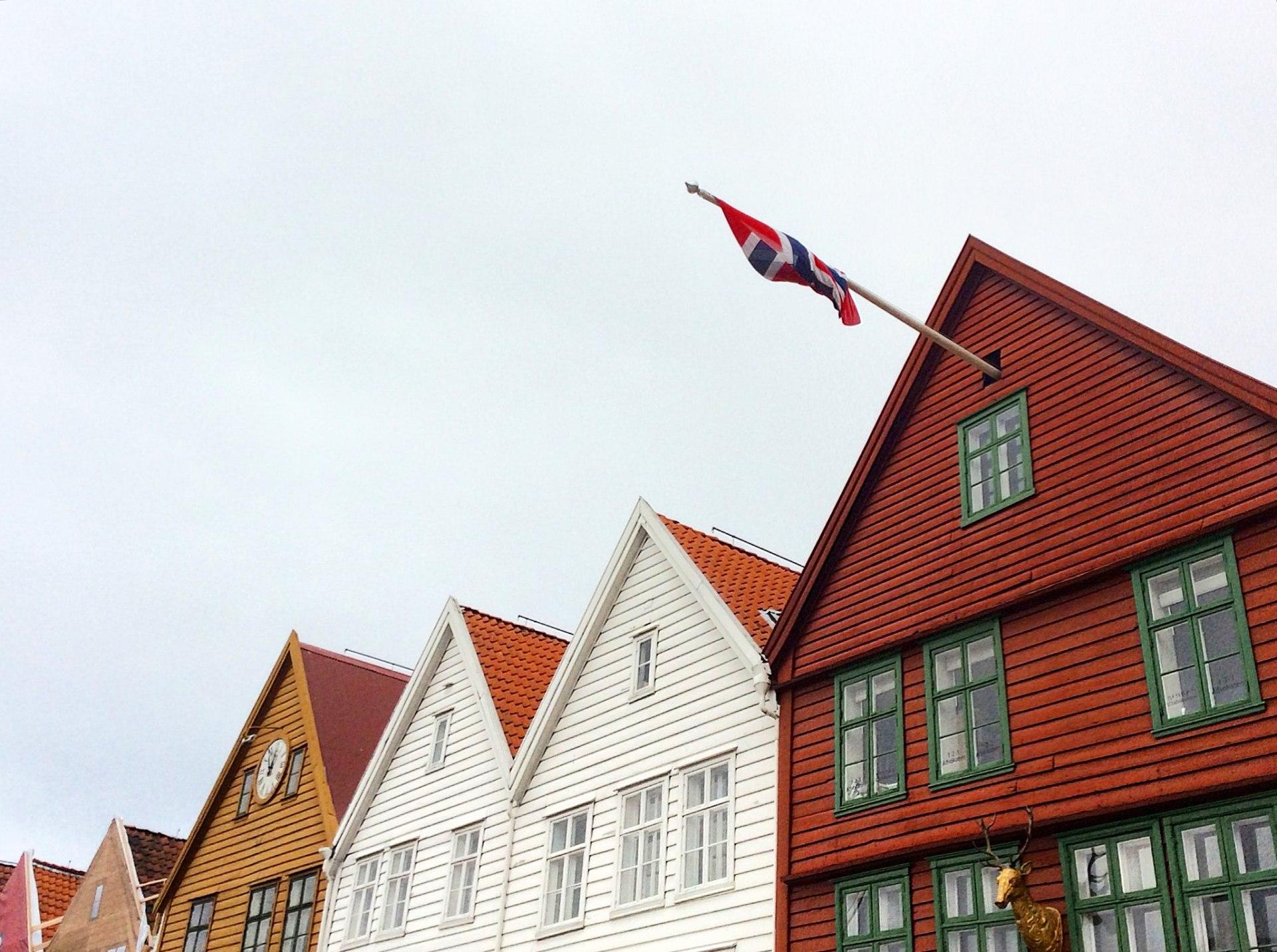 Bergen fiordi 1