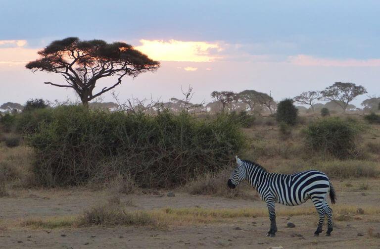 viajes de aventura: tanzania