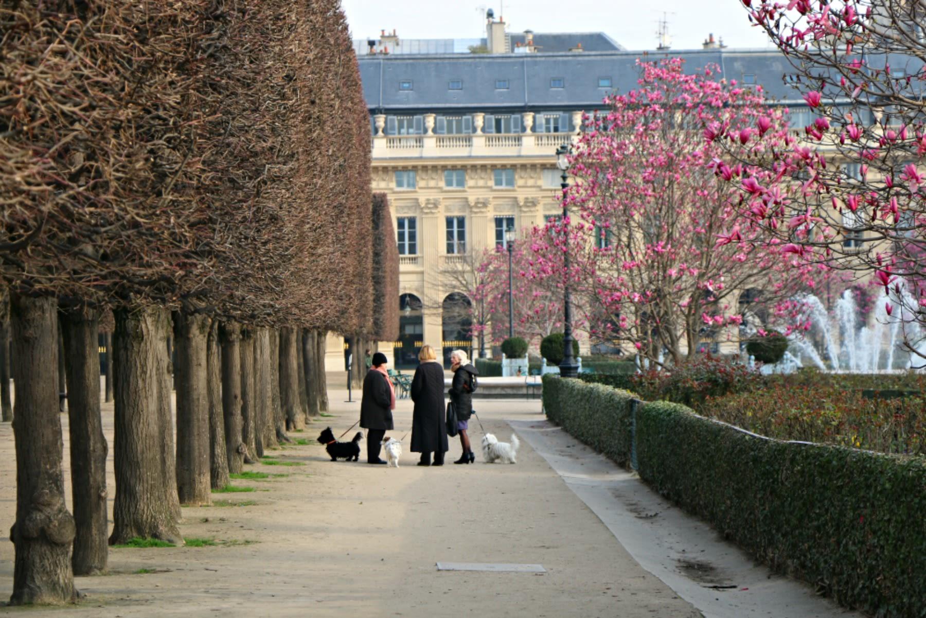 Giardini del Palais Royal, Parigi