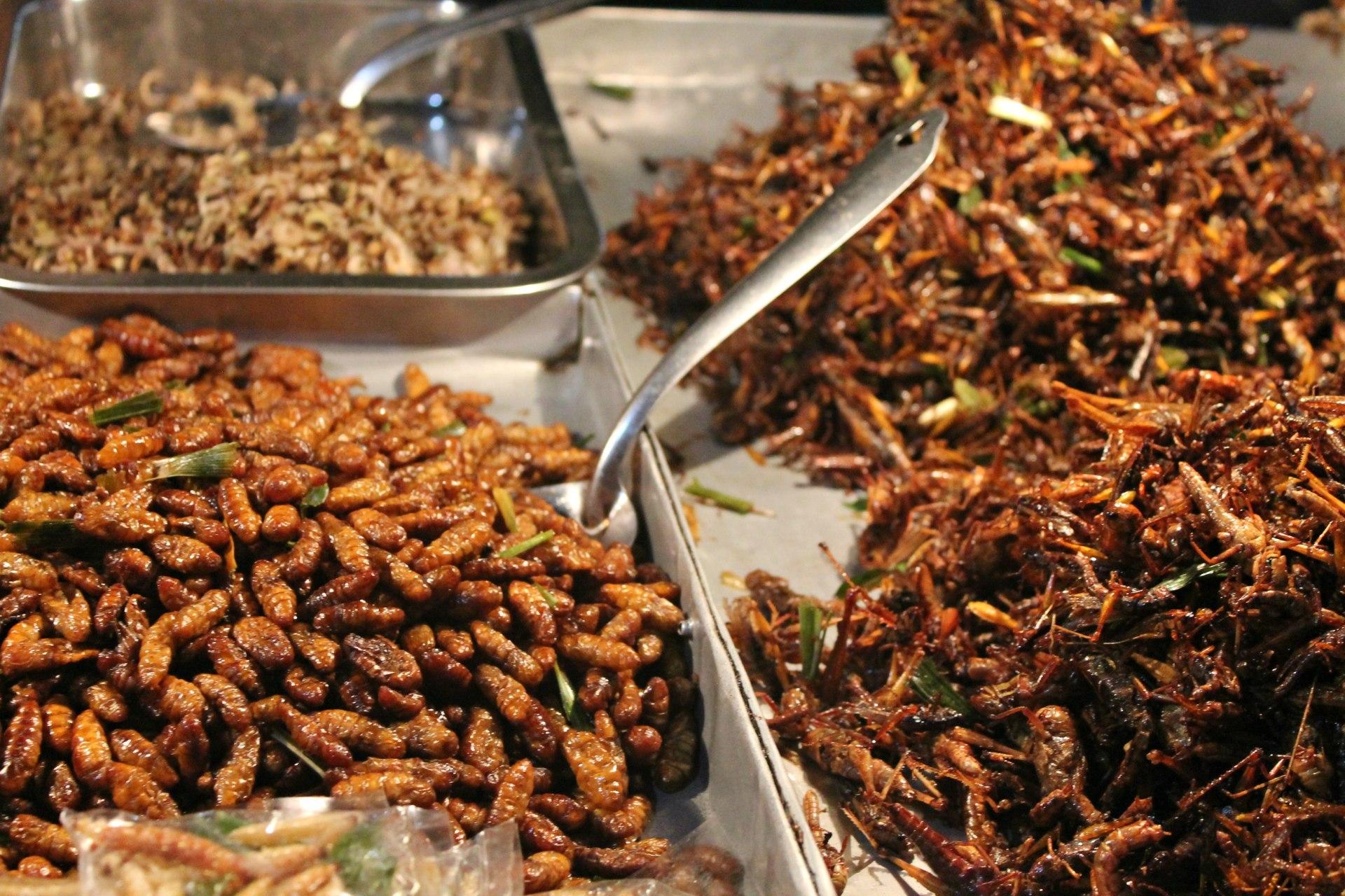 insetti fritti, cibo Bangkok