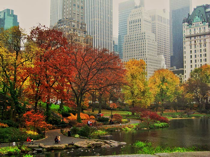 new-york-in-the-fall