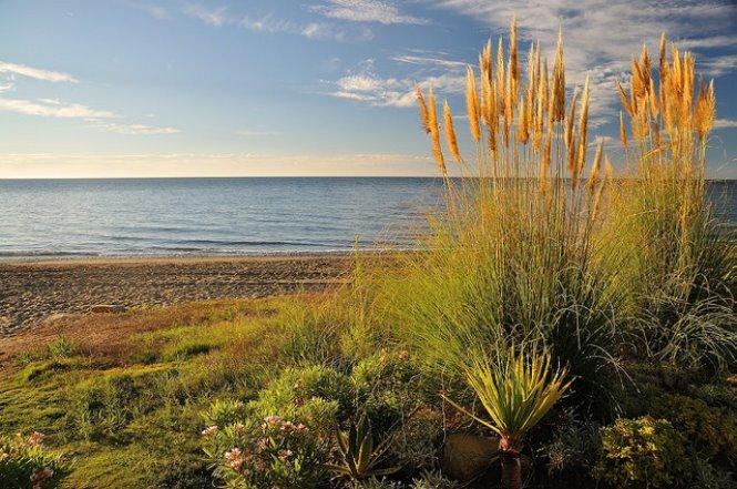 Estepona: Playas de Estepona