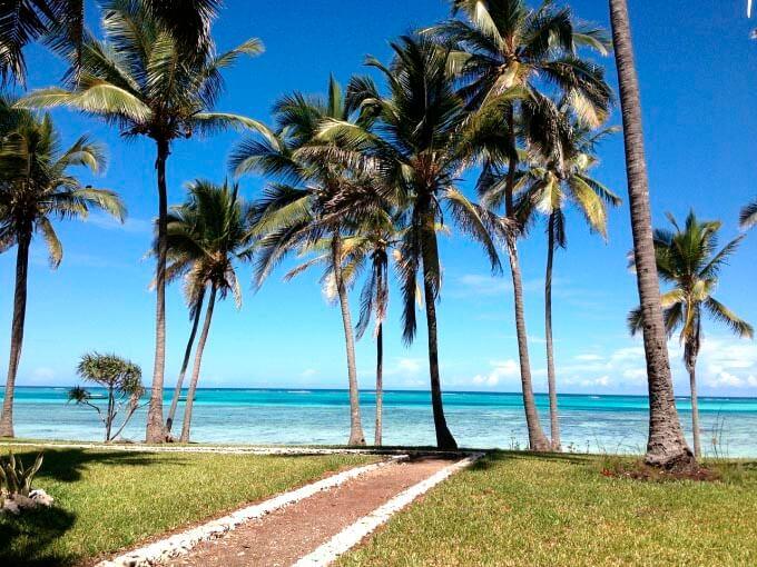 playa con palmeras en zanzibar tanzania