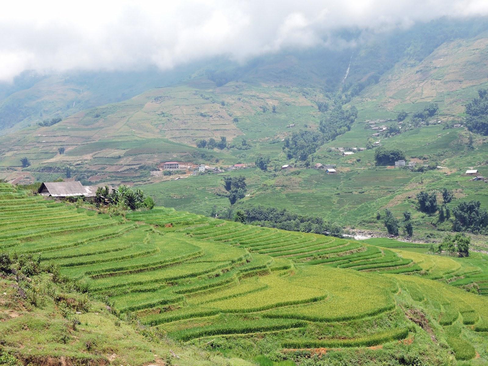Le colline di Sapa, Vietnam