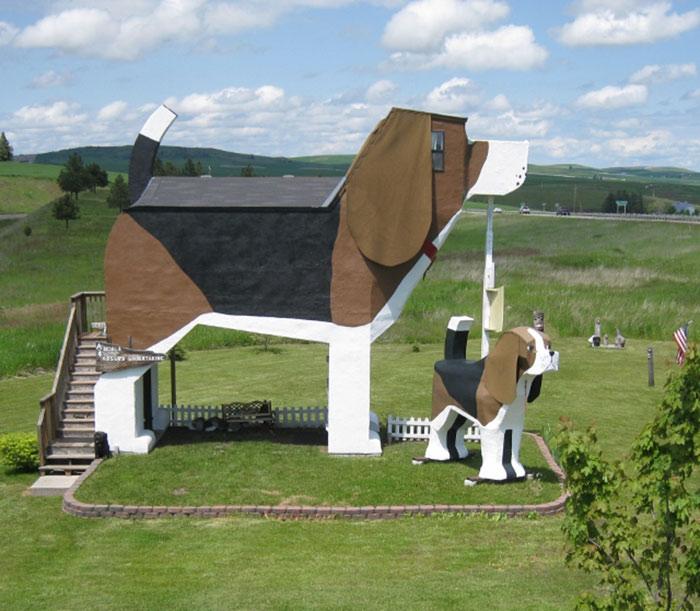 The Dog Bark Park Hotel
