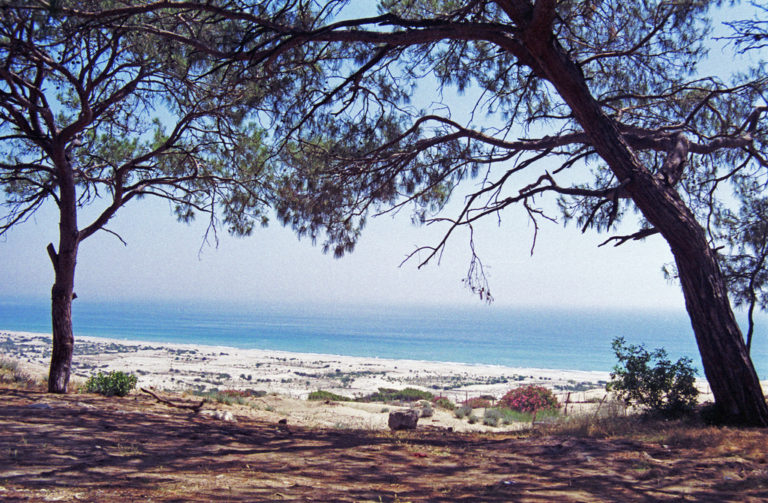 Playas naturistas: playa patara en turquía