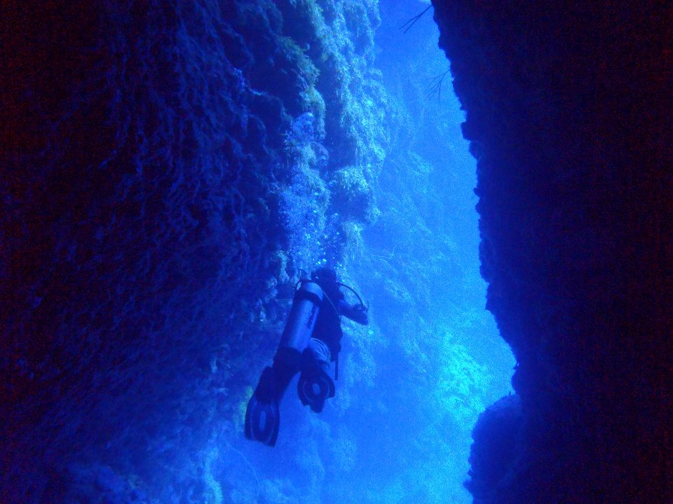 Buceo republica dominicana