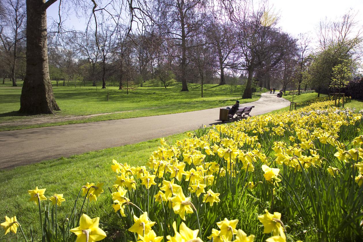 Green Park © The Royal Parks