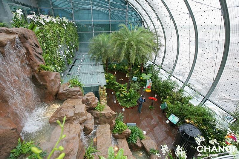 Aeropuertos del mundo: Naturaleza y jardines en la sala de tránsito de la terminal 3 – El primer jardín de mariposas en un aeropuerto.