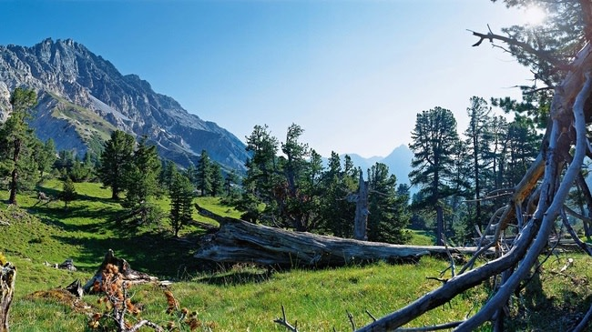 parque-nacional-suizo-en-suiza