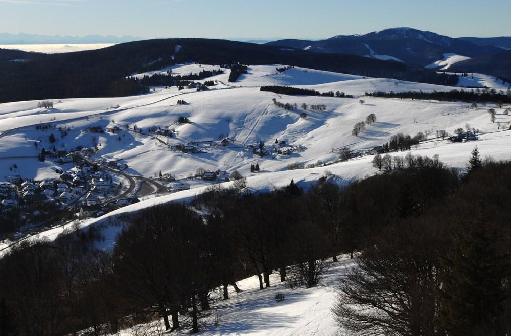 alemania-belchen-bosque-nevado