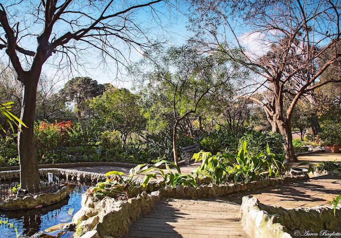 Gibraltar: Jardín botánico